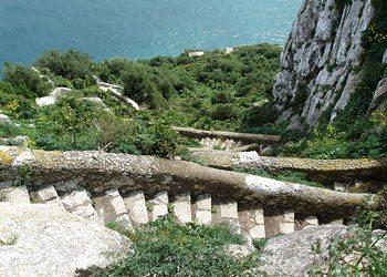 Mediterrainian Steps