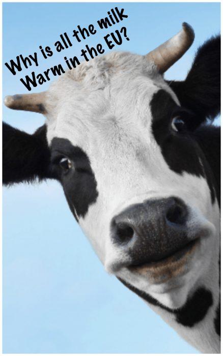 why europe loves warm milk